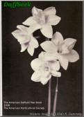 N. x odorus